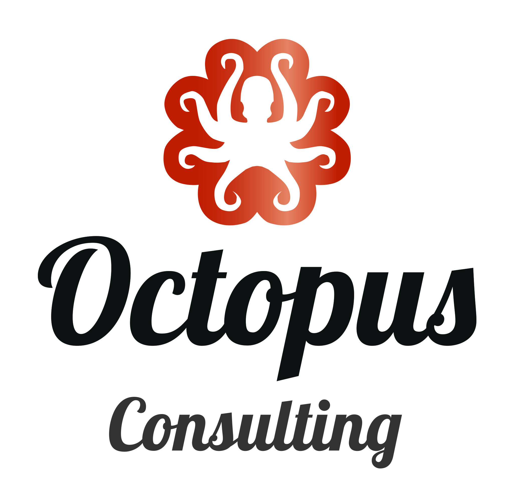 Octopus Consulting